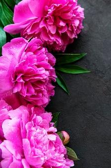 Verse roze pioen bloemen grens met kopie ruimte op zwarte achtergrond plat lag