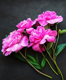 Verse roze pioen bloemen grens met kopie ruimte op zwarte ondergrond plat lag