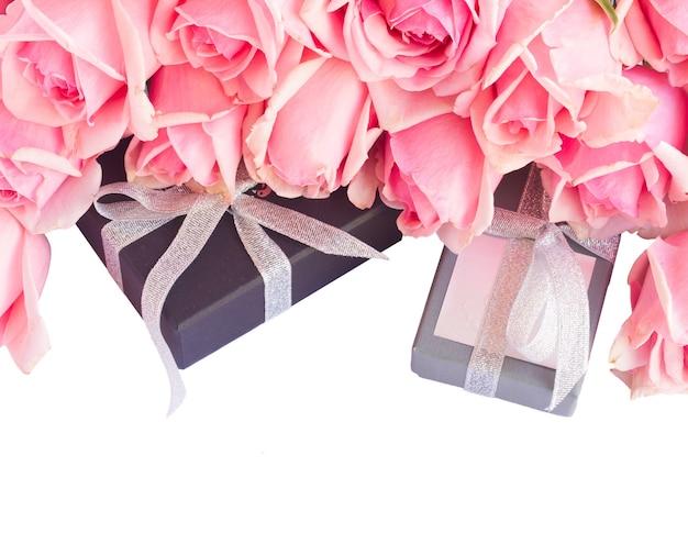 Verse roze tuinrozen met geschenkdozen geïsoleerd op een witte achtergrond