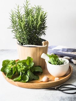 Verse rozemarijnstruik in houten potten, takjes van vers groen basilicum, wit mortier met stamper, zout en knoflook op een rond houten dienblad op grijze achtergrond.