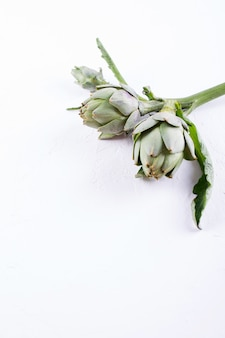 Verse ruwe organische artisjokbloem op de witte achtergrond.