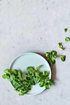 Verse sappige zoete maïssalade (veldsla, valerianella-locusta) op een plaat op een blauwe muur. het concept van een gezonde voeding. vegetarisme, close-up. selectieve aandacht. kopieer ruimte. wordt veganist.