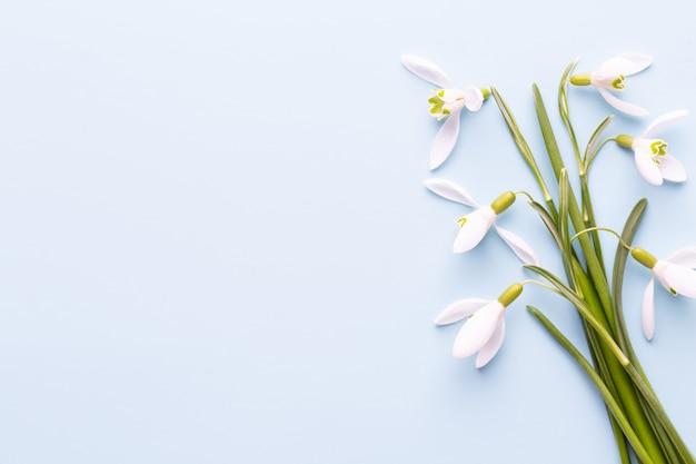 Verse sneeuwklokjes op blauw met plaats voor tekst. lente wenskaart. moederdag. plat leggen.