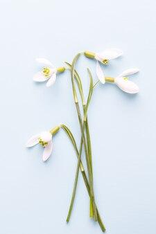 Verse sneeuwklokjes op blauwe achtergrond met plaats voor tekst. lente wenskaart. moederdag. plat leggen.