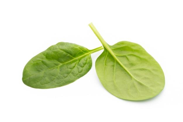 Verse spinazie die op wit wordt geïsoleerd.