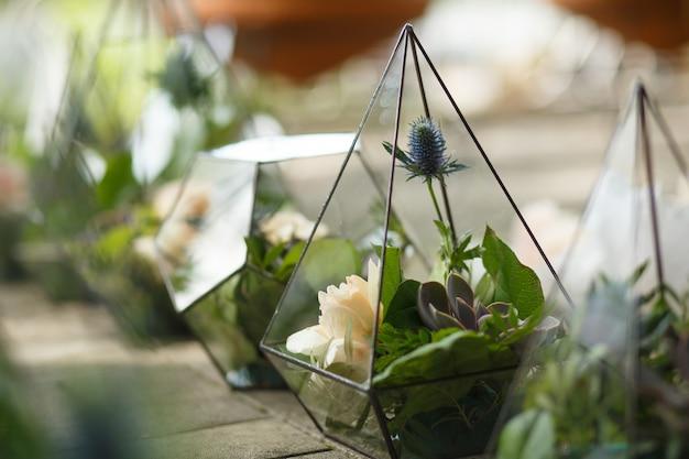 Verse succulente en roze bloemen in florarium van glas