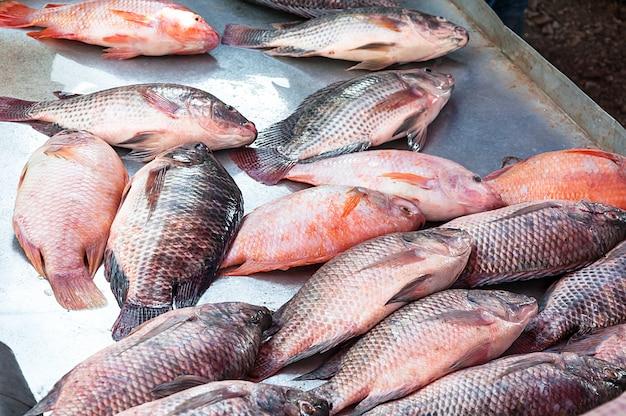 Verse tilapia-vissen, traditionele vissen in de markt in azië