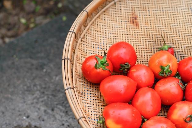 Verse tomaten in de mand