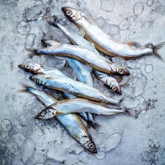 Verse vangst shishamo-vissen volledig eierenvlakte leggen op sjofele metaalachtergrond.