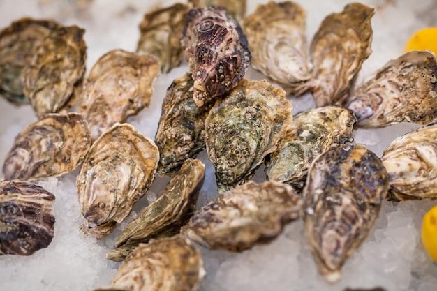 Verse vis en oesters in het restaurant.