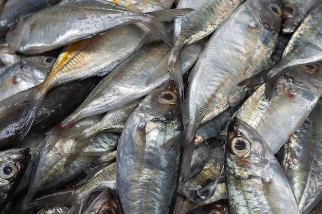 Verse vis geplaatst op ijs verkocht in de markt.