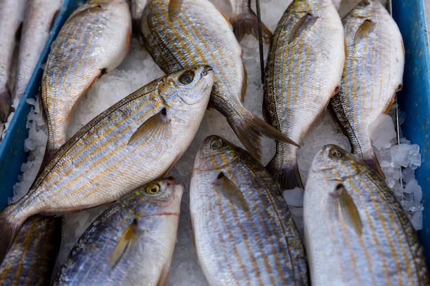 Verse vis met ijs in een mand op de markt. bovenaanzicht.