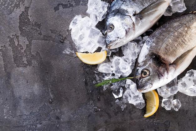 Verse vis op ijs