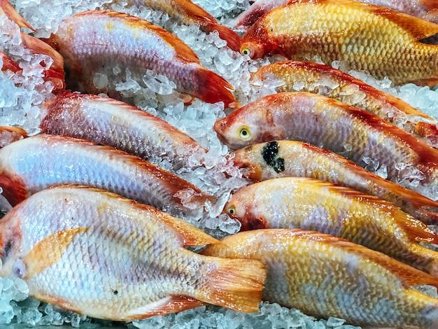 Verse vis te koop op de markt