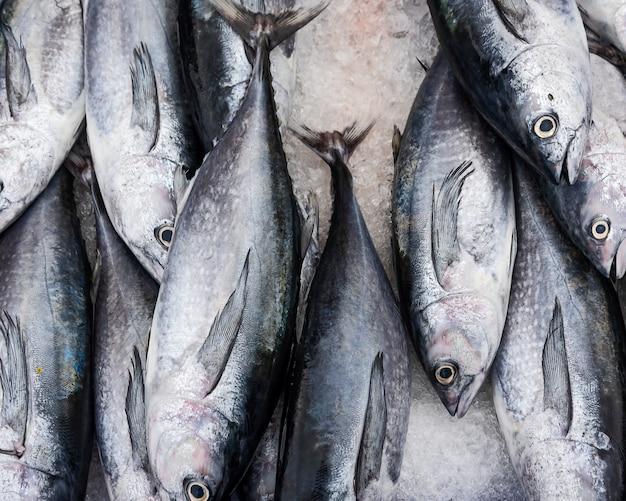 Verse vissen in een markt.