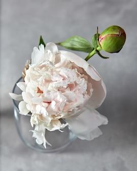 Verse witte bloempioen met knop in druppeltjes water bij een glasvaas op een grijze steenachtergrond.