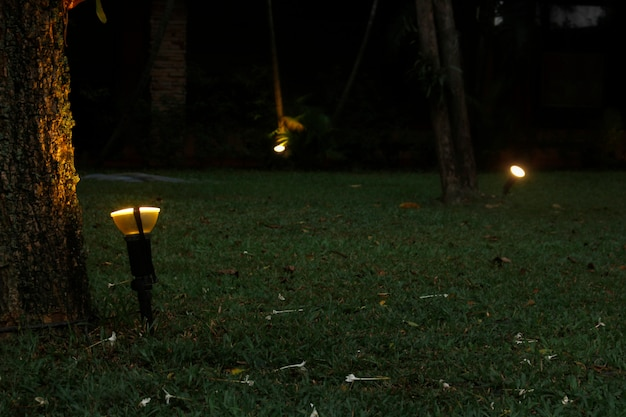 Versier de tuin 's nachts met licht.
