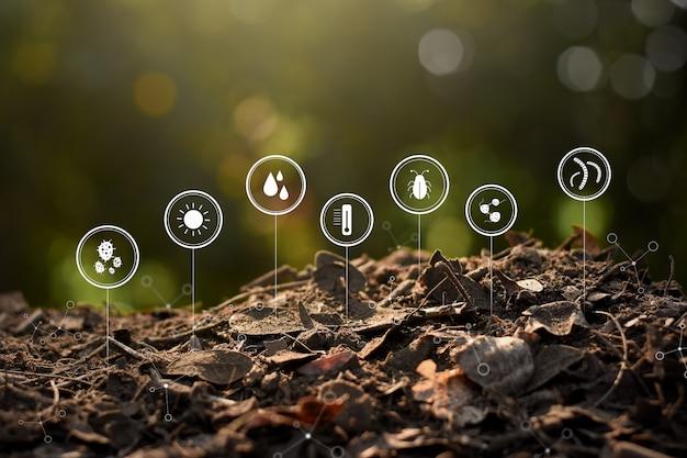 Versteende planten en bladeren veranderen in vruchtbare grond.