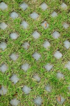 Verticaal beeld van de kleiklinkers van de grassteen die met groen gras voor achtergrond worden behandeld