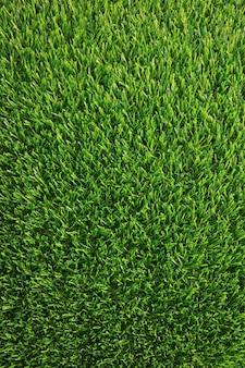 Verticaal beeld van weelderig groen grasgazon voor achtergrond