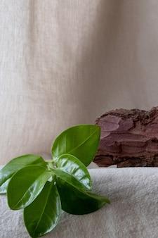 Verticaal. natuurlijke standaard van schorsboom voor presentatie en tentoonstellingen op pastel achtergrond.