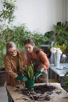 Verticaal portret van twee jonge vrouwelijke bloemisten die planten planten terwijl ze in een bloemenwinkel werken of samen tuinieren, kopieer ruimte