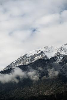 Verticaal schot van bergtoppen bedekt met sneeuw en bomen onder bewolkte hemel