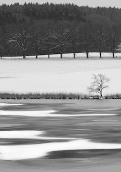 Verticaal schot van bomen, bergen, rivier die door de winter worden beïnvloed