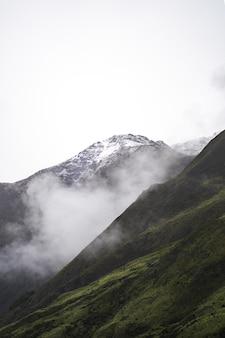 Verticaal schot van de groene heuvels op een sombere dag