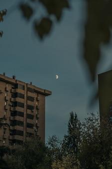 Verticaal schot van de maan boven een gebouw dat door vage bladeren wordt gezien