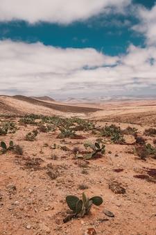 Verticaal schot van de woestijn onder de bewolkte hemel die in marokko wordt gevangen
