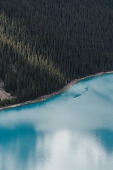 Verticaal schot van de wolken die in het duidelijke bevroren meer weerspiegelen dat door een bos wordt omringd