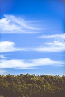 Verticaal schot van dikke groene bomen en de rustige hemel met een paar wolken