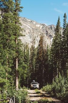 Verticaal schot van een auto die op een weg in het midden van een bos met bergen op achtergrond drijft