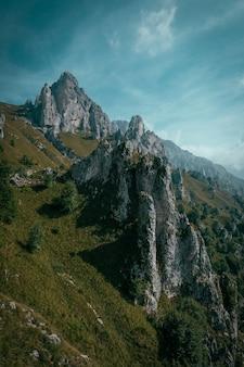 Verticaal schot van een grasrijke heuvel met bomen dichtbij rotsachtige klippen en blauwe hemel
