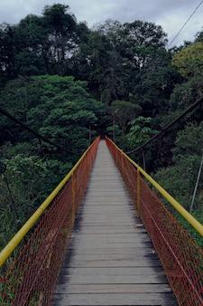Verticaal schot van een houten brug die naar een bos leidt