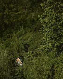 Verticaal schot van een houten huis dat door groen in een bos wordt omringd