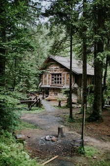 Verticaal schot van een houten hut in het bos dat door hoge bomen op een zonnige dag wordt omringd