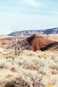 Verticaal schot van een kleine heuvel in een droog grasveld met hoge rotsachtige bergen op de achtergrond