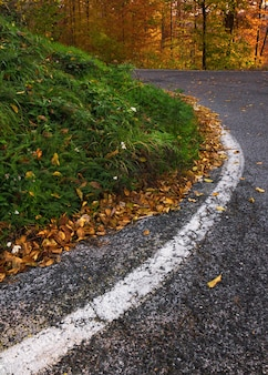 Verticaal schot van een kronkelende weg in medvednica-berg in zagreb, kroatië in de herfst