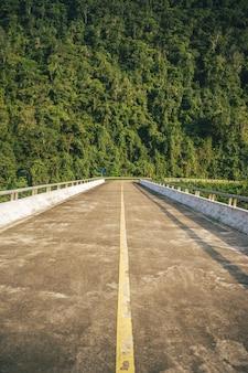 Verticaal schot van een lange brug tegen een bosberg