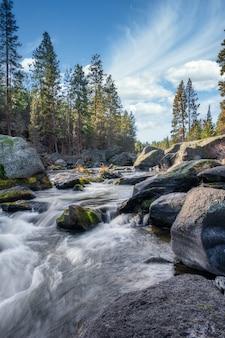 Verticaal schot van een rivier die door stenen en een bos stroomt