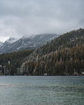 Verticaal schot van een rivier in het midden van een bergachtig landschap dat in mist wordt behandeld