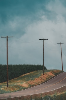 Verticaal schot van een smalle plattelandsweg met elektriciteitspalen en een bos