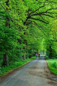 Verticaal schot van fietsers die in een groene tuin berijden