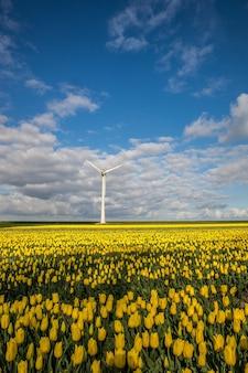 Verticaal schot van geel bloemgebied met een windmolen onder een blauwe bewolkte hemel