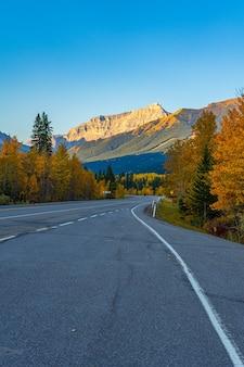 Verticaal schot van lege snelwegweg samen met herfstbomen in kananaskis, alberta, canada