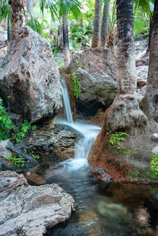 Verticaal schot van naar beneden tuimelde water in een reeks mini-watervallen