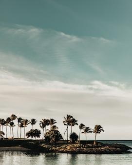 Verticaal schot van palmen op een eilandje op het water onder een blauwe hemel