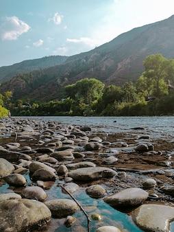 Verticaal schot van rotsen in het water met een beboste berg